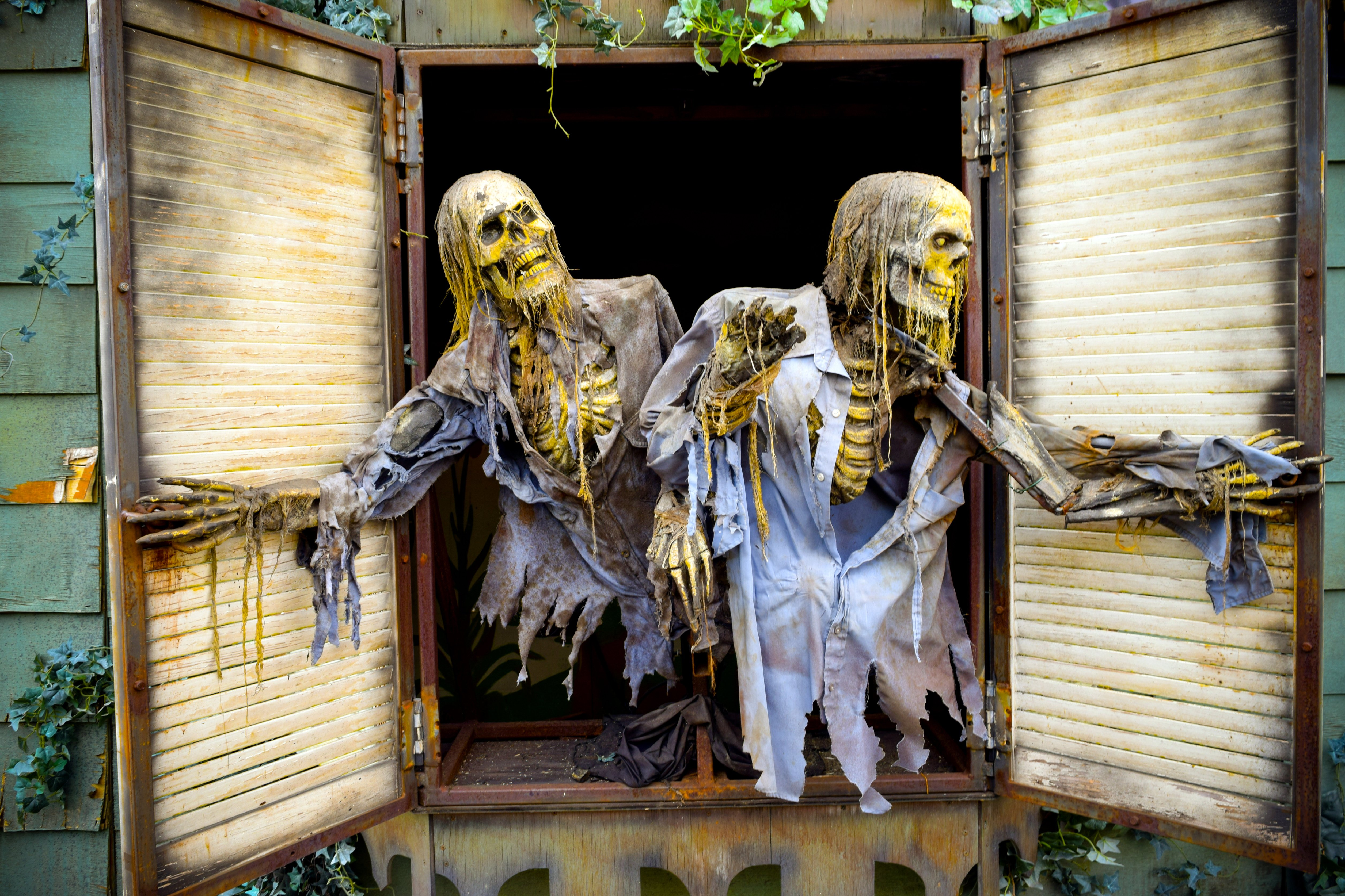 Skeletons look out of a Halloween haunted house